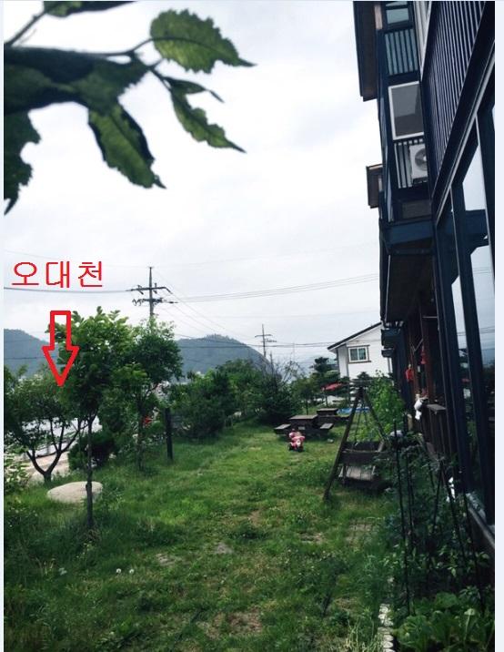 박규리14.jpg
