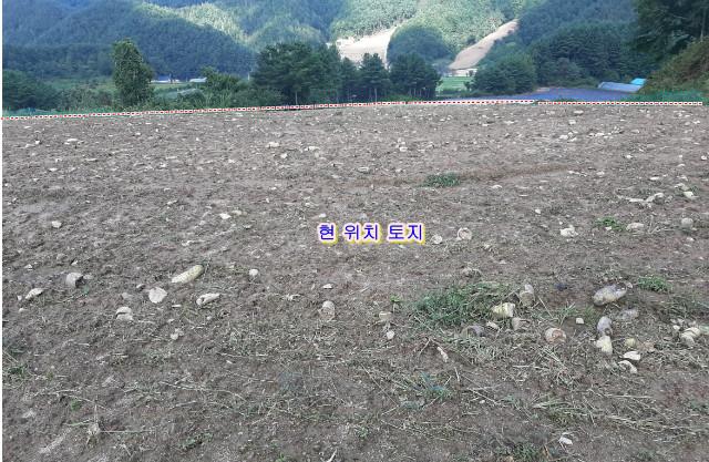 김석기1-1.jpg